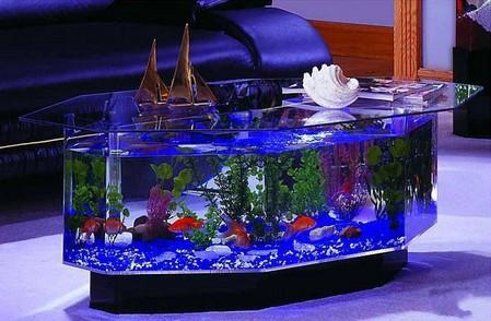 Аквариум – не только домик для рыб. Необычные и разные, маленькие и огромные аквариумы – солисты в интерьере — фото 13