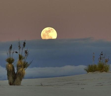 Белая жара в пустыне White Sands National Monument — фото 5