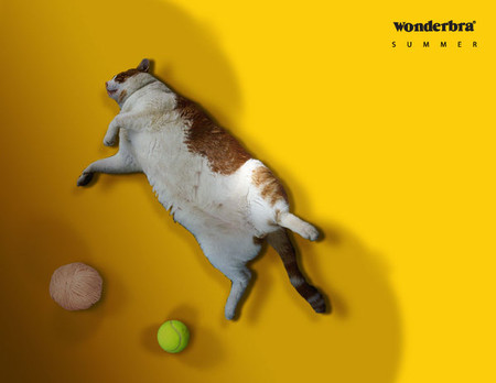 WonderBra – хитрые лифчики в хитрой рекламе — фото 16