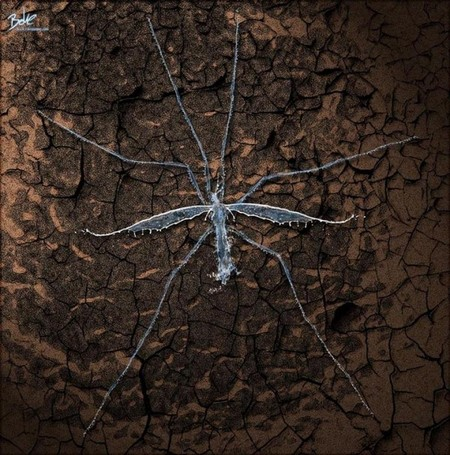 «Цифровая вода» - фотофантазии В_О_К_Е — фото 6
