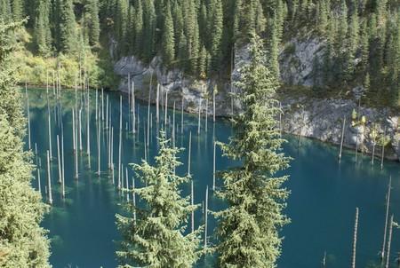 Волшебное озеро Каинды в Казахстане — фото 7