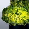 Экологично + технологично = лампа из морских водорослей