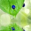 Что, если мир станет более … голубым? Красивый фотошоп
