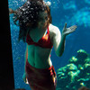 Русалки существуют! Weeki Wachee Springs – город настоящих русалок
