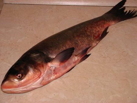 Рыбка в имбирном маринаде — фото 2