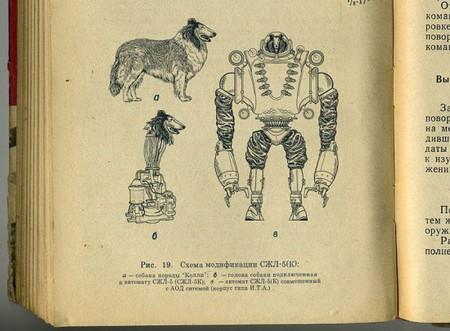 Собачье сердце. Советский биоробот — фото 3