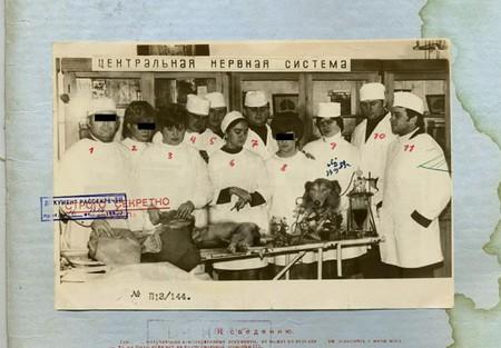 Это, судя по всему группа ученых. которая занималась проектом советского биоробота