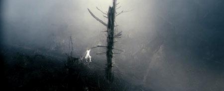 Но в лесу есть чего бояться