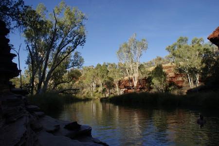 Австралия – красная земля, белые попугаи и зеленые оазисы — фото 17