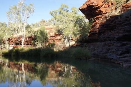 Австралия – красная земля, белые попугаи и зеленые оазисы — фото 15