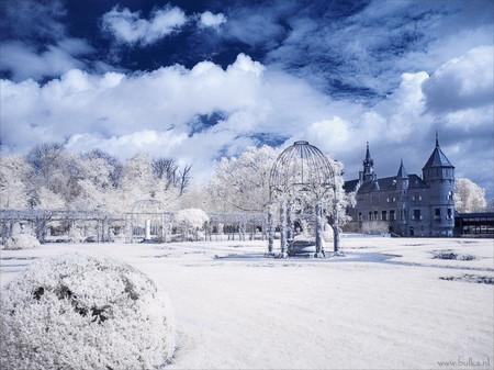 Красота в инфракрасном варианте: фотосет от Марии Нецунски — фото 5