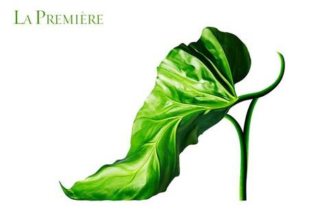 Обувная коллекция Мишеля