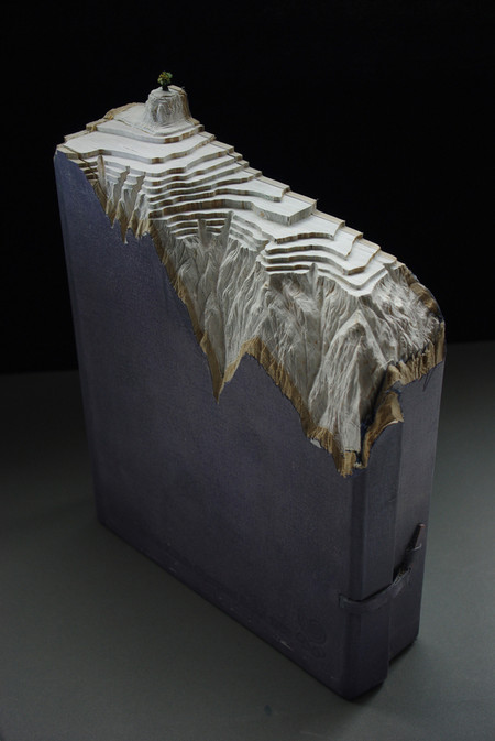 Скульптуры из книг от Гая Ларами (Guy Laramee). — фото 11