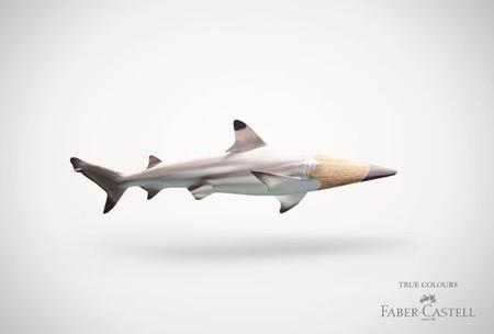 Вот такая акула — карандаш