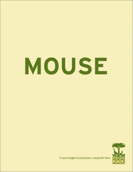 """А если слово """"мышь"""" вызывает ассоциации лишь с компьютером, то и Вам пора в зоопарк!"""