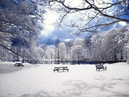 Красота в инфракрасном варианте: фотосет от Марии Нецунски — фото 6