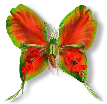Цветы — отличный материал для крыльев бабочки!