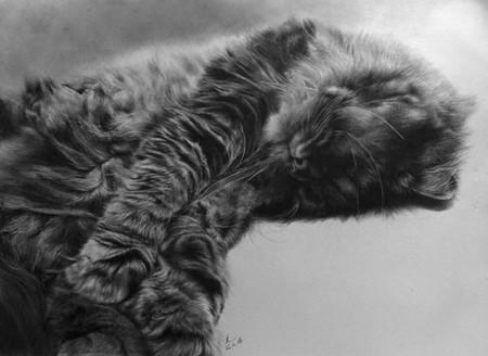 Не верь глазам: рисунки Поля Ланга удивительно похожи на фото. — фото 4