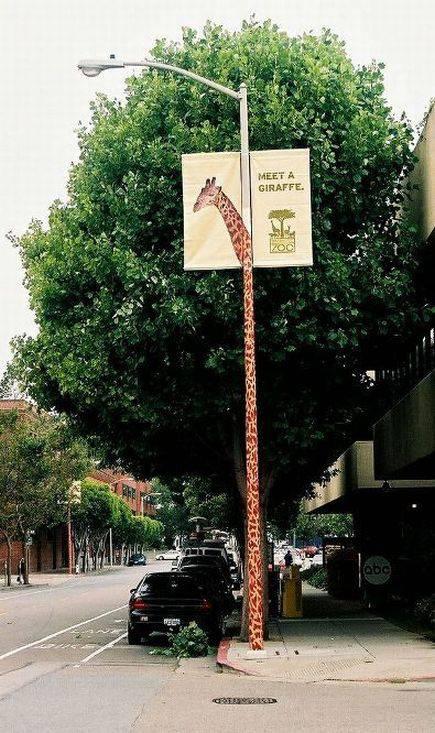 Реклама зоопарка Сан-Франциско