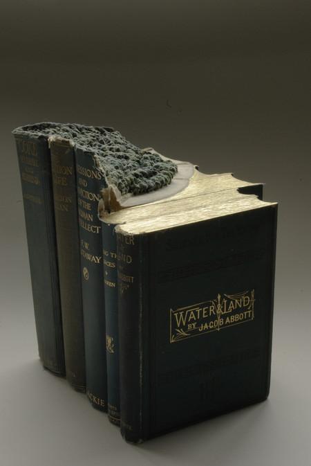 Скульптуры из книг от Гая Ларами (Guy Laramee). — фото 12