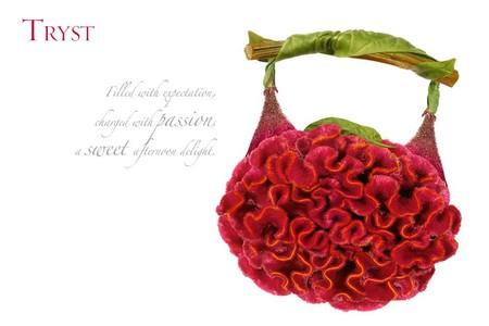 Расцветают сумочки и туфли - фотоработы Мишеля Черевкова — фото 11