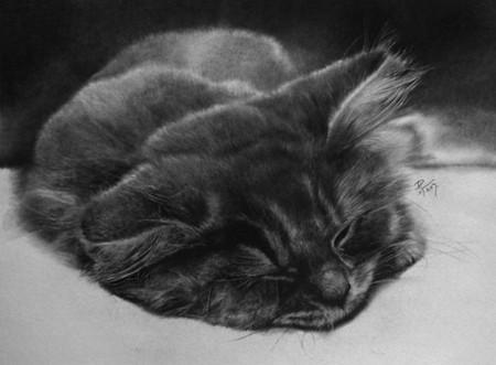 Не верь глазам: рисунки Поля Ланга удивительно похожи на фото. — фото 5