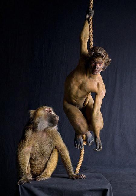 Все мы немножко... гепарды? Фотоработы Леннет Ньюэлл — фото 14