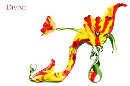 Расцветают сумочки и туфли - фотоработы Мишеля Черевкова — фото 5