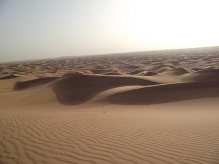 Пустыня раскинулась до самого горизонта