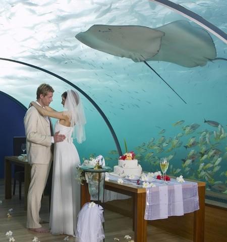 Уникальный подводный отель Poseidon Undersea Resort — фото 6