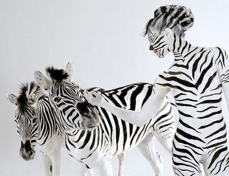 Все мы немножко... гепарды? Фотоработы Леннет Ньюэлл — фото 6