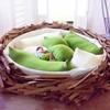 Креативный диван-гнездо от O*GE Creative Group