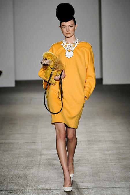 Бренд Isaac Mizrahi покрасил даже пуделя в желтый :)