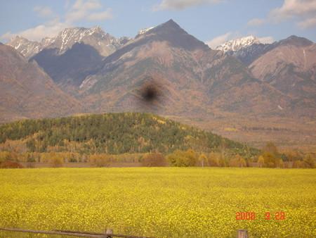 духи гор тоже иногда любят попозировать