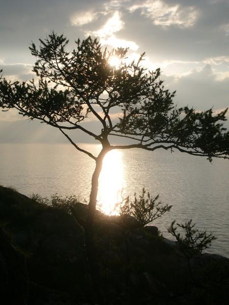 Сказки Байкала — фото 26