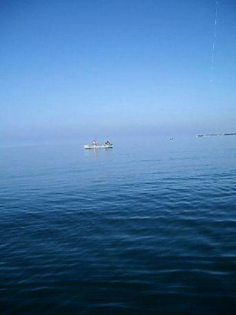 Морская рыбалка в Абхазии — фото 4