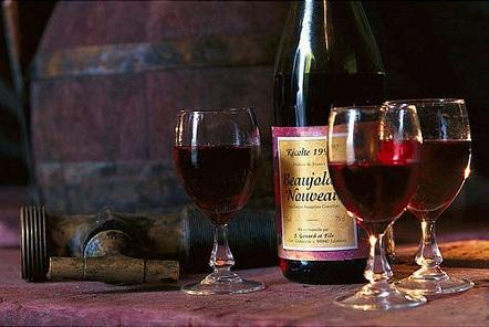 Вино с нескромной ценой — фото 3