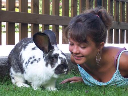 Джон Апдайк: кролик на морозе — фото 2