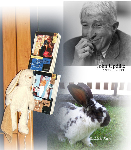 Джон Апдайк: кролик на морозе — фото 1