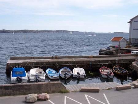 Немного о рыбалке в Швеции — фото 3