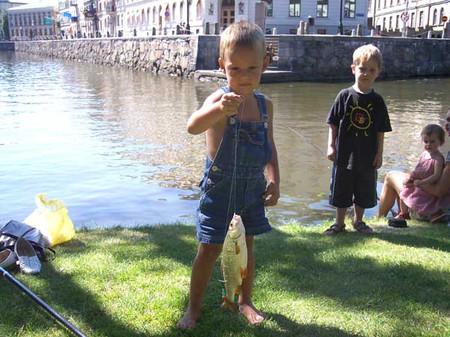 Немного о рыбалке в Швеции — фото 5