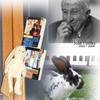Джон Апдайк: кролик на морозе